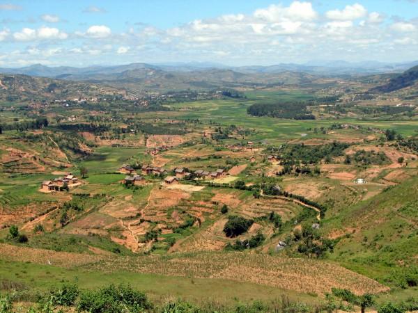 A Madagascan lanscape Copyright: Wikimedia.com