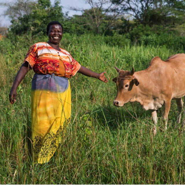 Au Kenya, des banques collectives dirigées par des femmes profitent à tout le monde