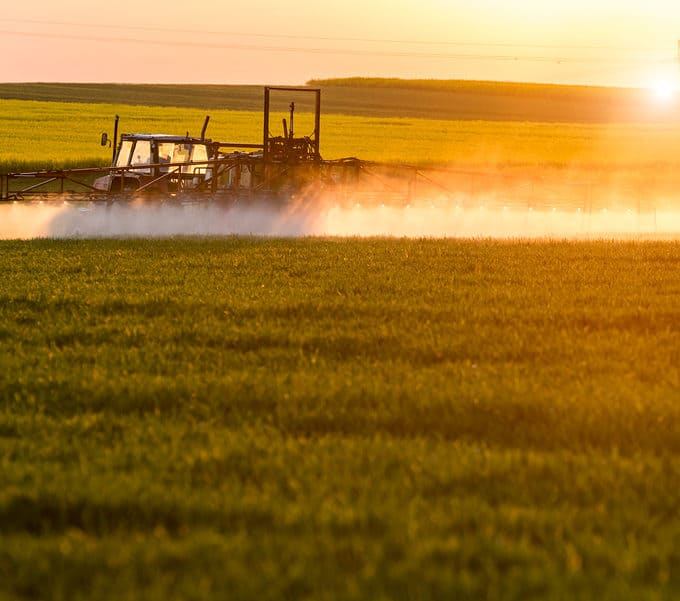 Are Pesticides Good or Bad?