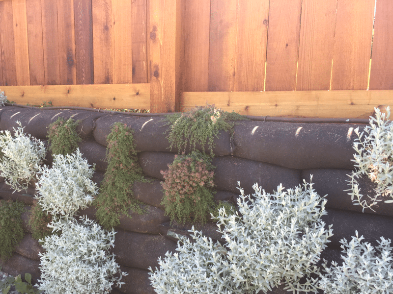 Living Wall -A Retaining Wall that came to life!
