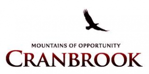cranbrook city lg
