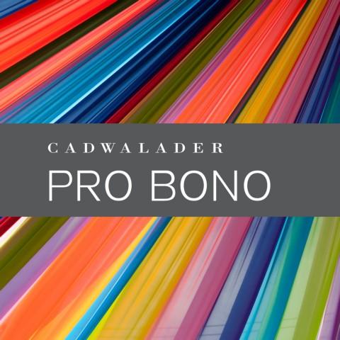 Pro Bono Brochure 2019