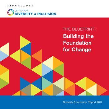 Diversity Brochure 2017
