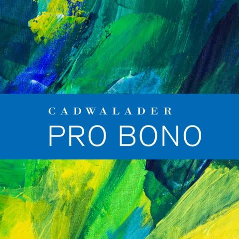 Pro Bono Brochure 2020