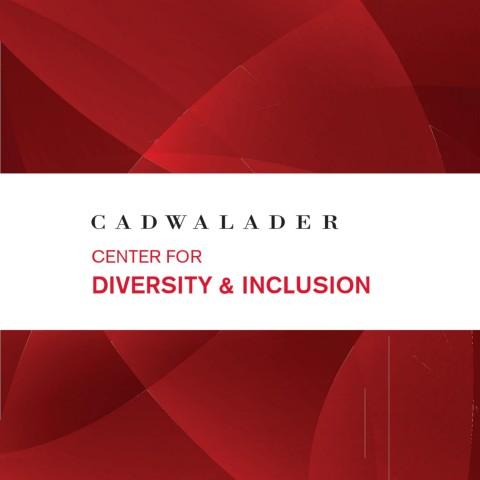 Diversity Brochure 2020