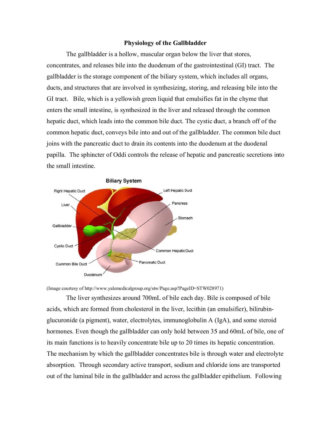 Physiology Of The Gallbladder Indiana University Fliphtml5