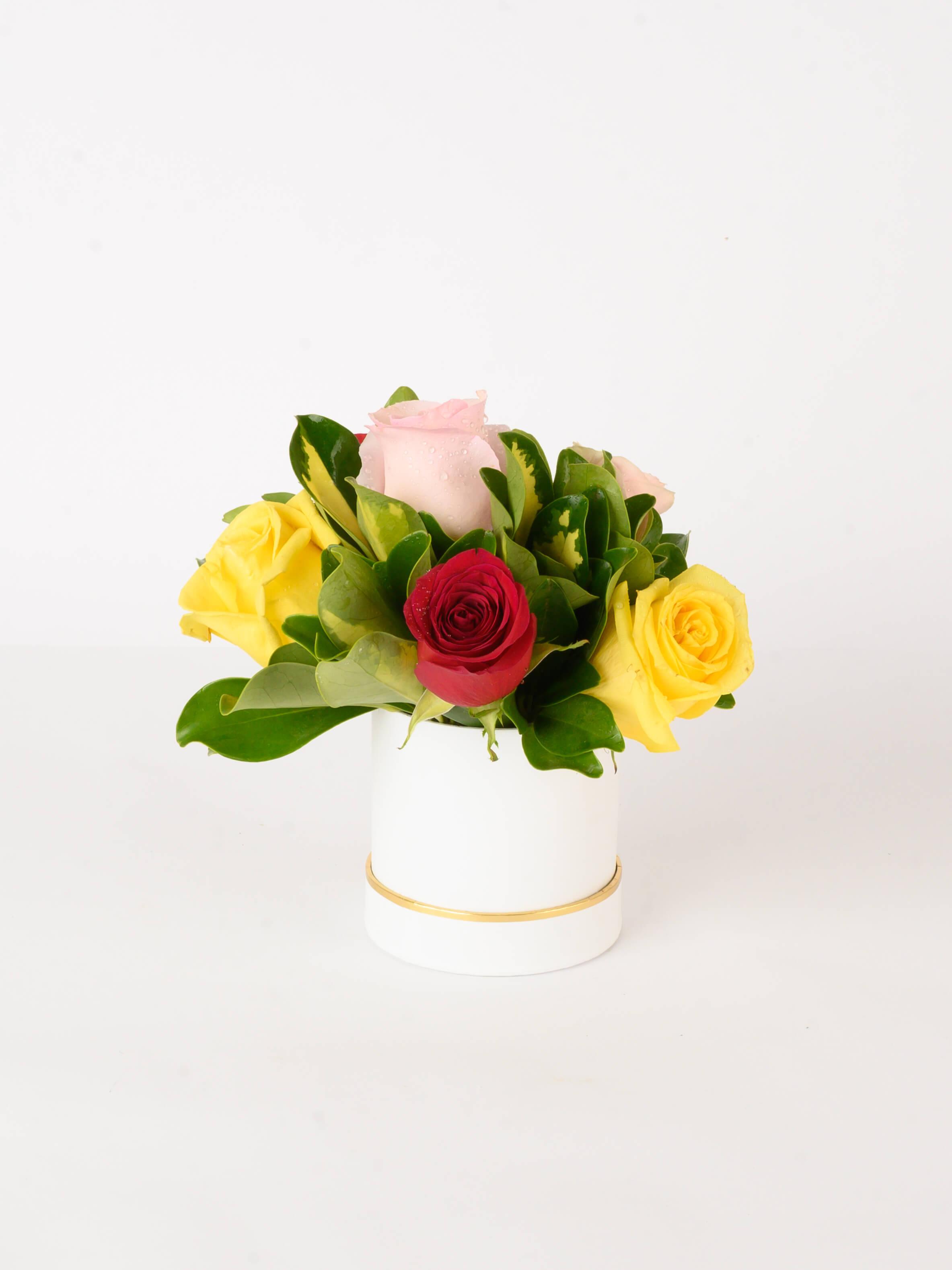 Lovely Surprise - Rosas de color en caja de regalo blanca
