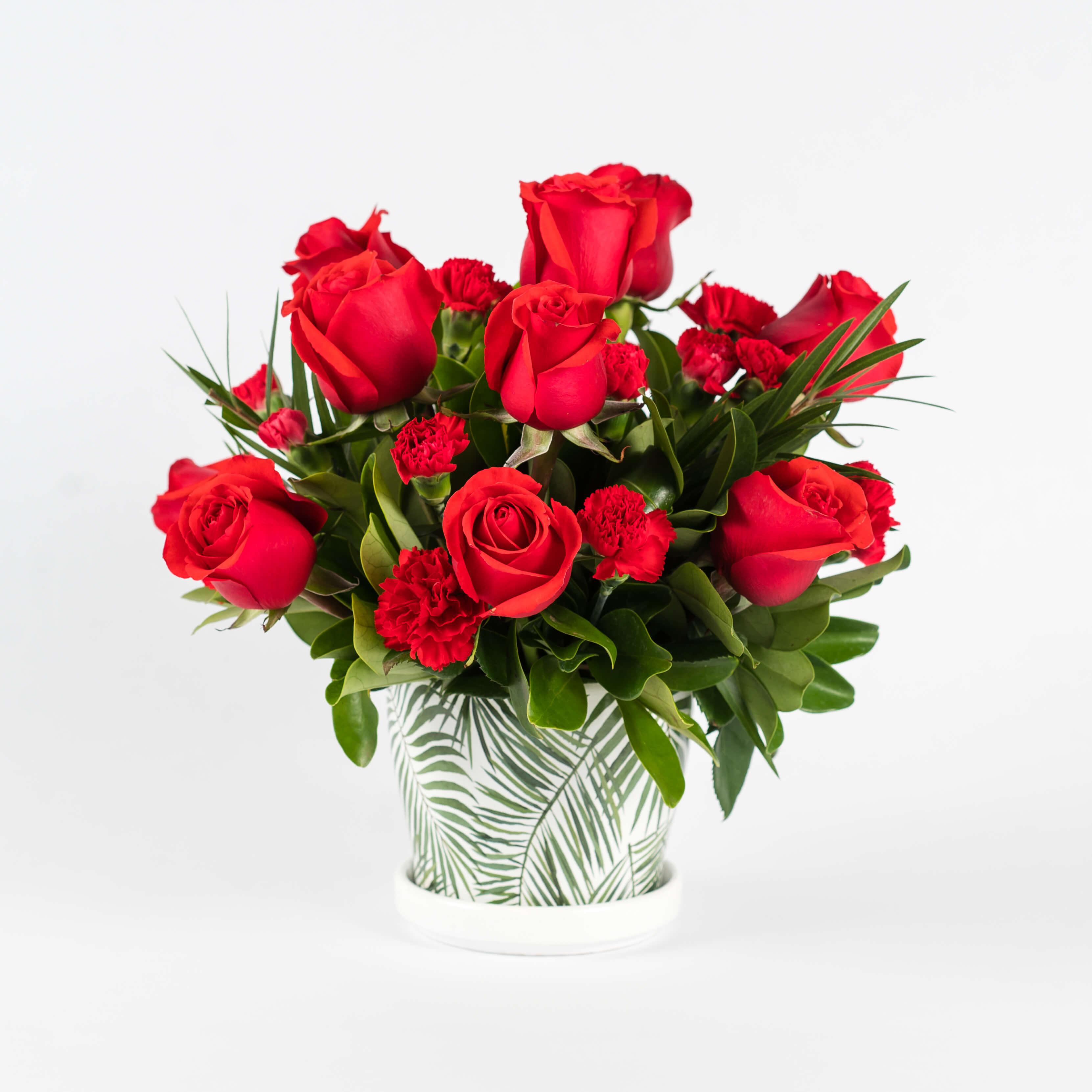 12 rosas rojas con mini clavel en macetera de porcelana