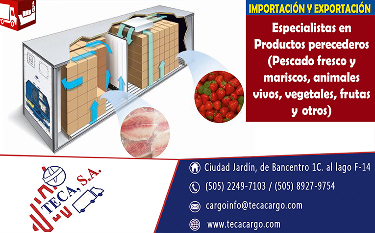 online.storage/TECA/Resources/b294e1d0-95ae-4cf0-ab8d-8fecb85341c1.jpg
