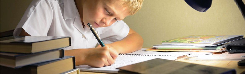 Developing Problem Solving Skills in Children