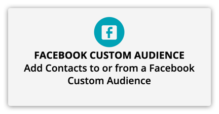 the facebook custom audience element