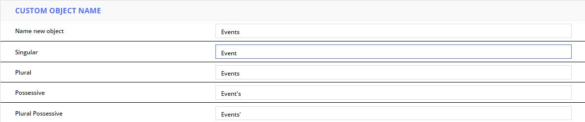 custom object name conjugations