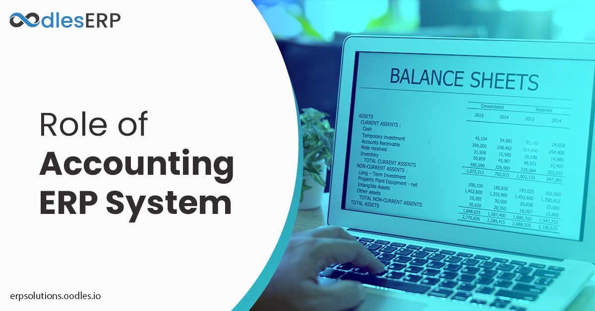 accounting erp software solutions