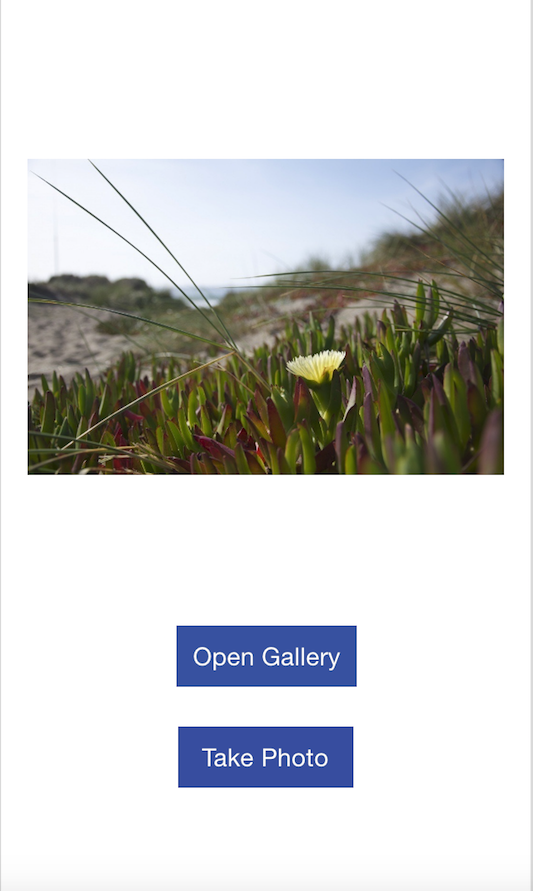 Open Image Gallery and Take photo in Swift