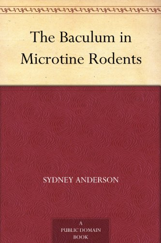 The Baculum in Microtine Rodents