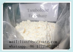 Enanject 250 (Testosterone Enanthate)250mg/ml by Foshan