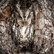 National-geographic-trave-007