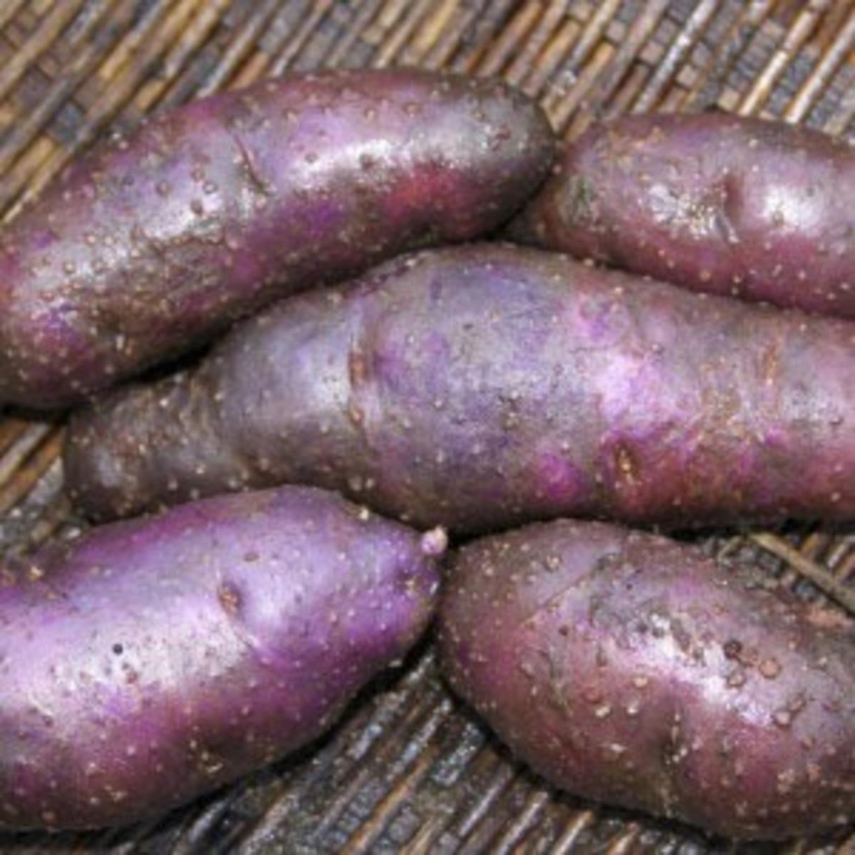 Pawhero potato