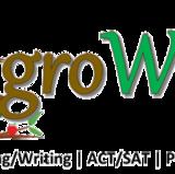 reachgrowize@gmail.com
