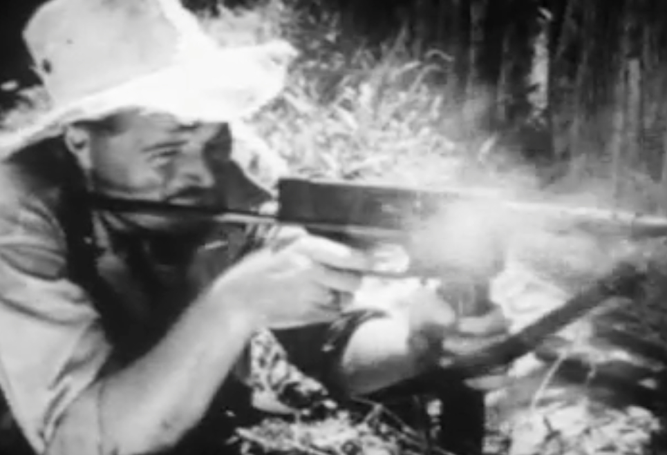 The Vietnam Collection - WGBH Openvault