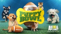 Operation Paws For Homes - Puppy Bowl Viewing Party @ Jailbreak Brewing Company | Laurel | Maryland | United States