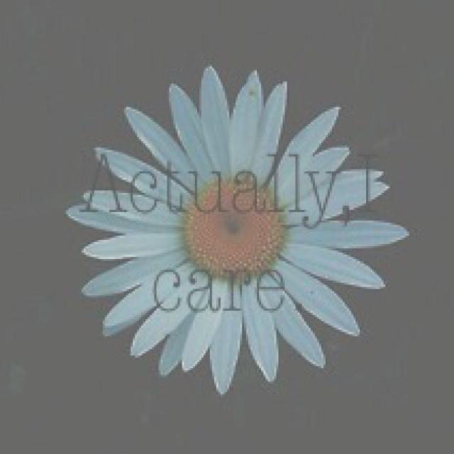 5034-20-435010475-profile-832000-2