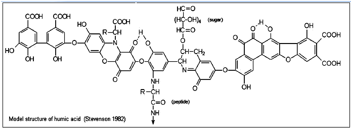 model structure of humic acid
