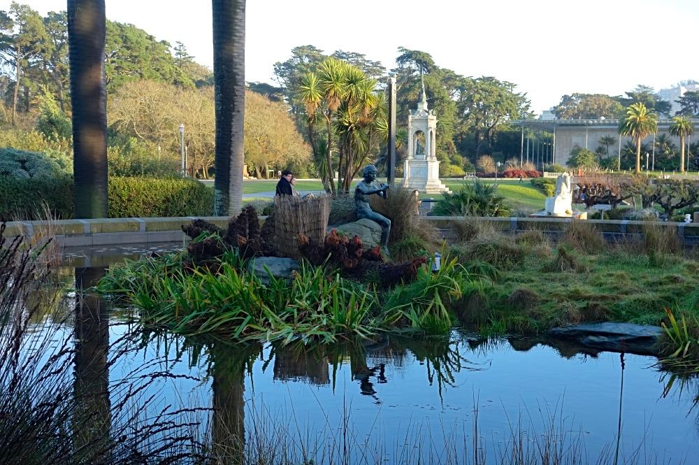 Golden Gate Park Pond Reflection