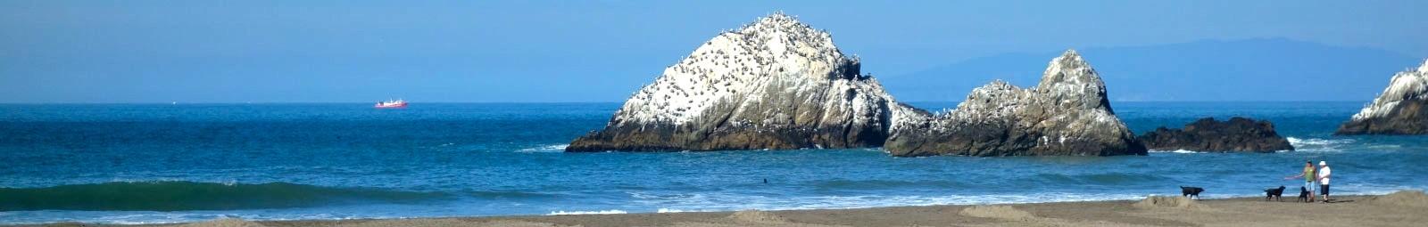 Ocean Beach San Francisco Guide