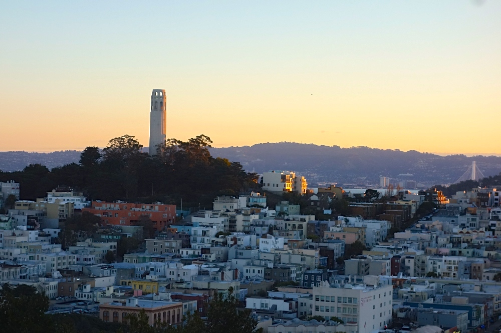 BEST WALLPAPERS: SunSet wallpapers |Coit Tower Flowers