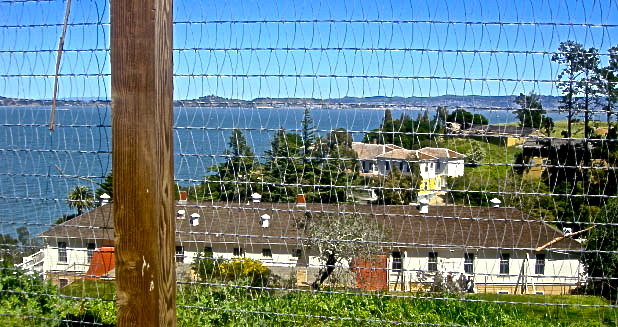 Angel Island internment camp, San Francisco, California.