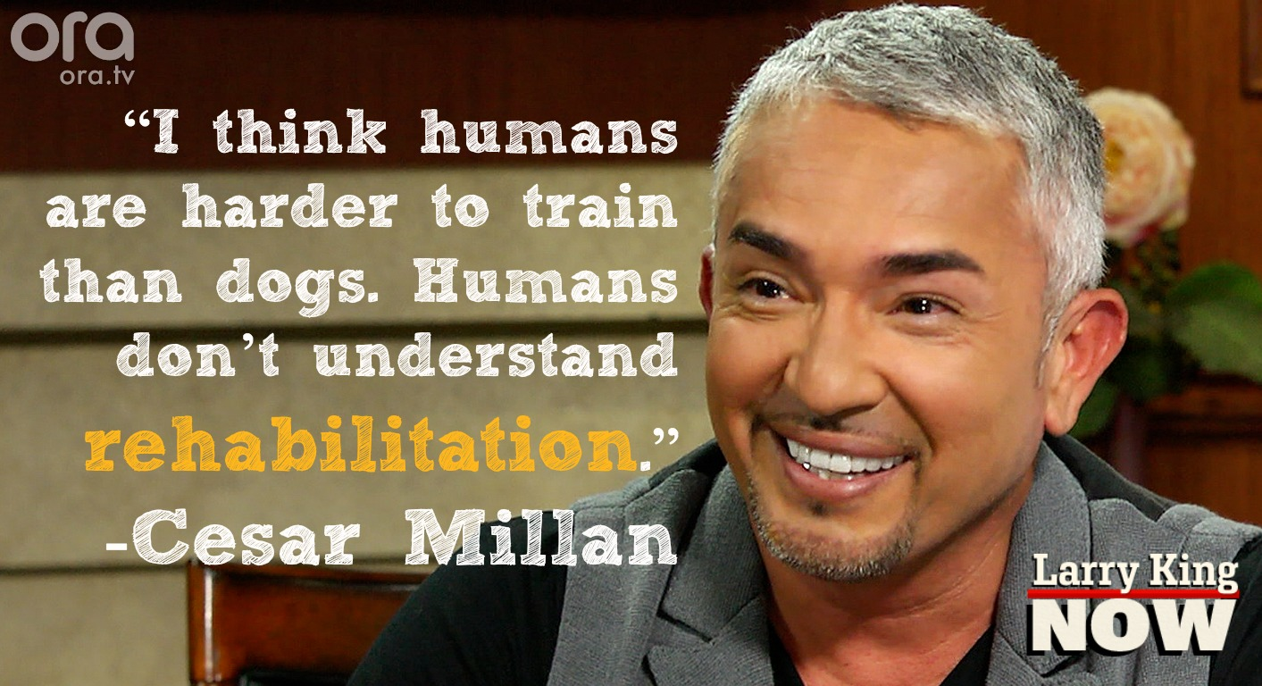 Cesar Millan on 'Larry King Now' - 3/11/2014