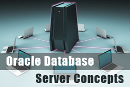 Oracle Database Server Concept