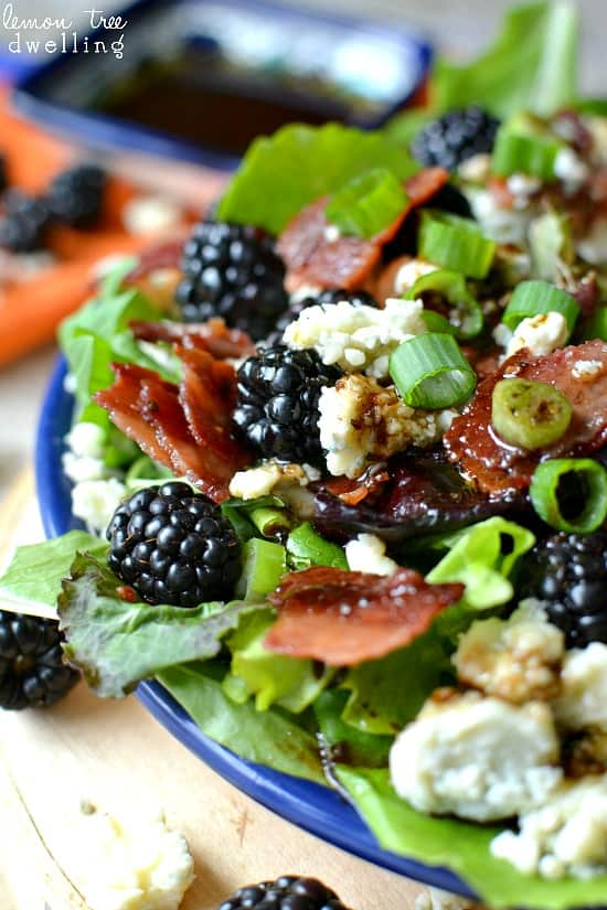 Blackberry-Salad-3.jpg