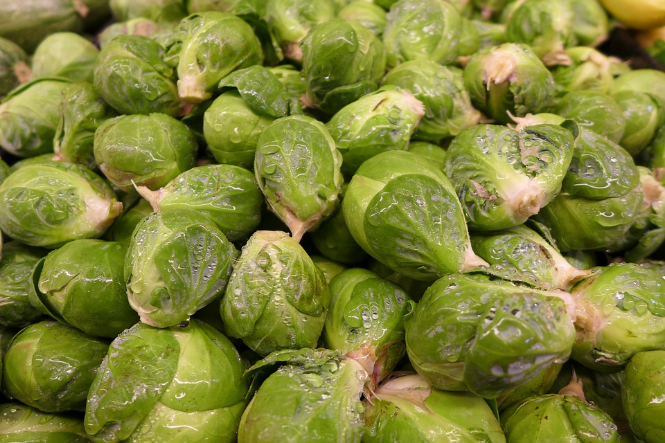 brussel-sprouts-92240_960_720.jpg