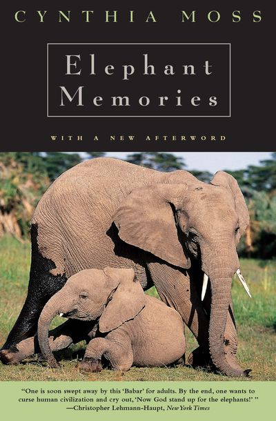 Buy Elephant Memories at Amazon