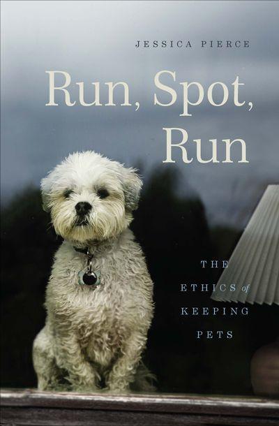 Buy Run, Spot, Run at Amazon
