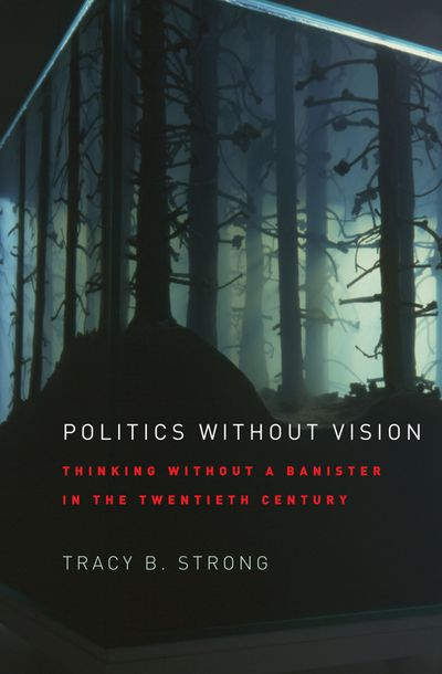 Buy Politics without Vision at Amazon