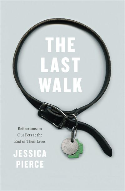 Buy The Last Walk at Amazon