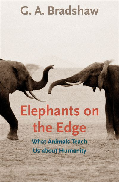 Buy Elephants on the Edge at Amazon