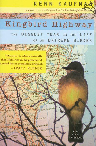 Buy Kingbird Highway at Amazon