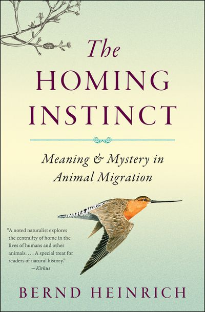 Buy The Homing Instinct at Amazon