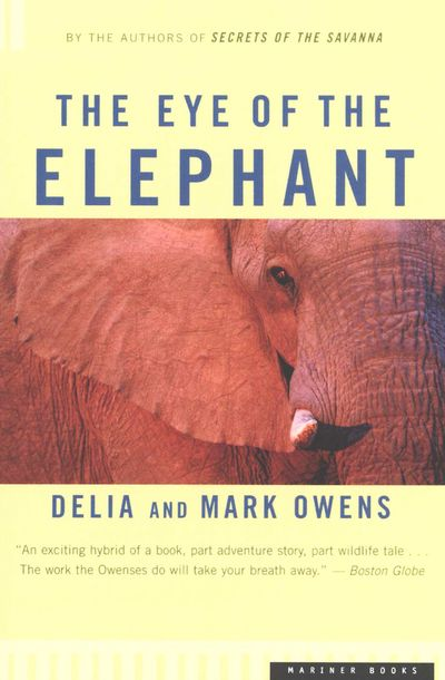 Buy The Eye of the Elephant at Amazon