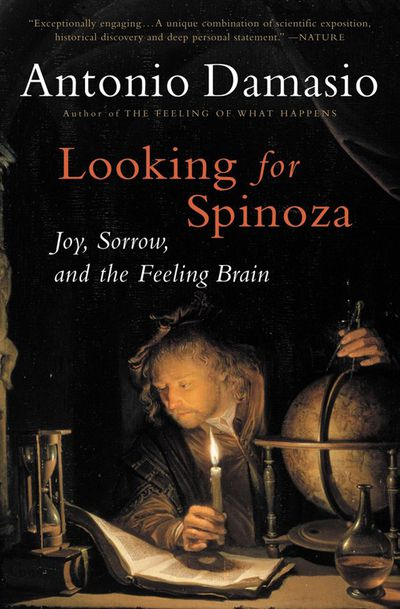 Buy Looking for Spinoza at Amazon