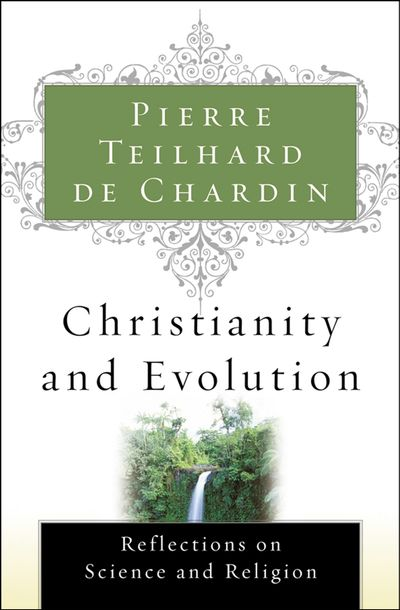 Buy Christianity and Evolution at Amazon
