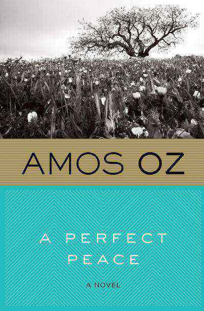 Buy A Perfect Peace at Amazon