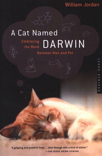 Buy A Cat Named Darwin at Amazon