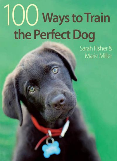 Buy 100 Ways to Train the Perfect Dog at Amazon