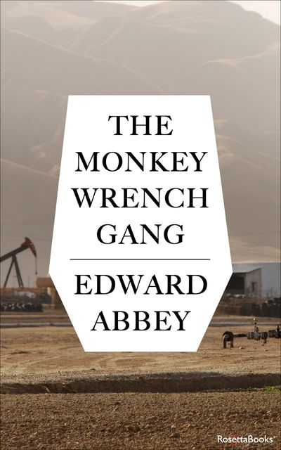 Buy The Monkey Wrench Gang at Amazon