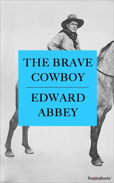 Buy The Brave Cowboy at Amazon